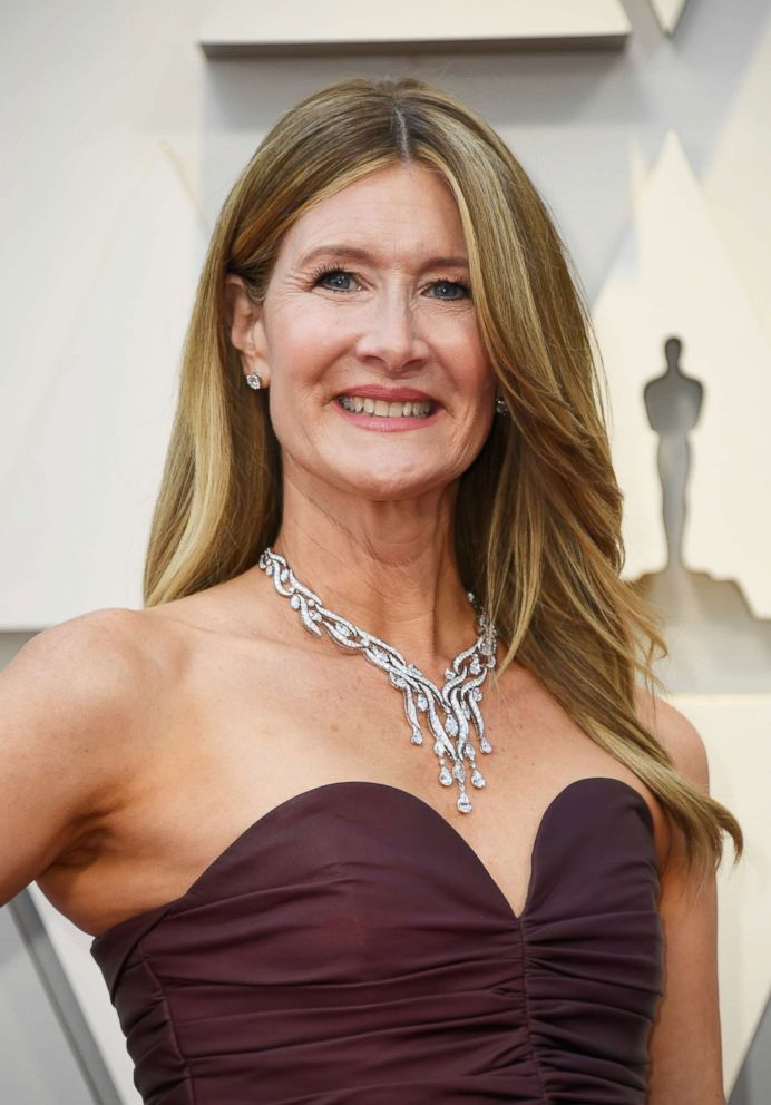 PHOTO: Laura Dern attends the 91st Annual Academy Awards at Hollywood and Highland, Feb. 24, 2019, in Hollywood, Calif.