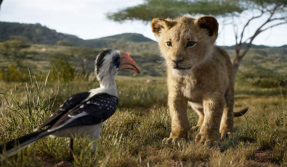 PHOTO: A scene from The Lion King.
