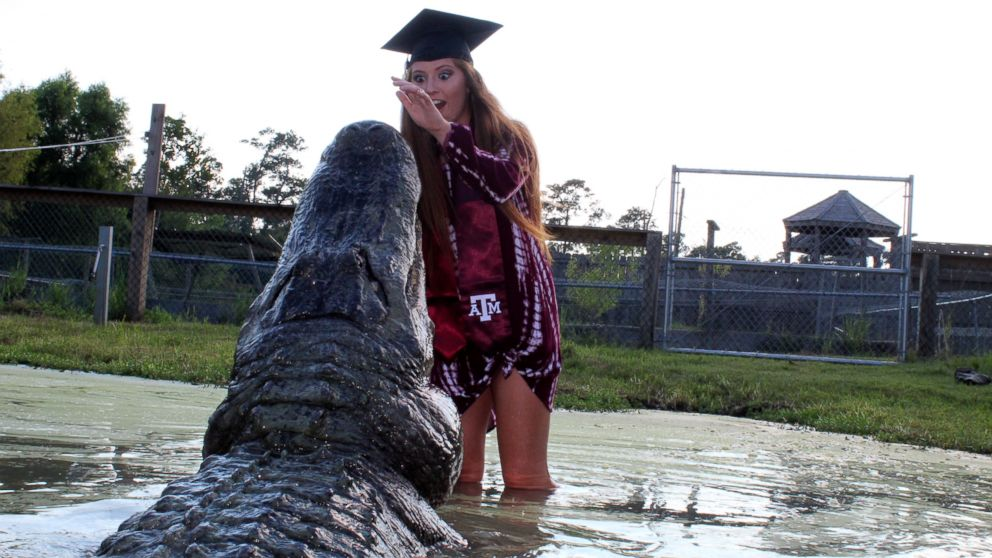 Tamu Graduation 2020.College Student Poses With Gator In Graduation Photos