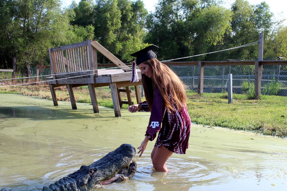 PHOTO: Makenzie Holland took her Texas A&M graduation photos with Big Tex a gator she bonded with while interning at Gator Country Rescue.