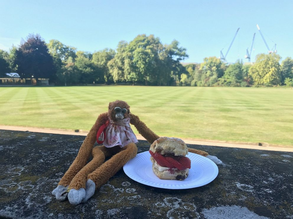 PHOTO: Harriet stuffed monkey Buckingham Palace