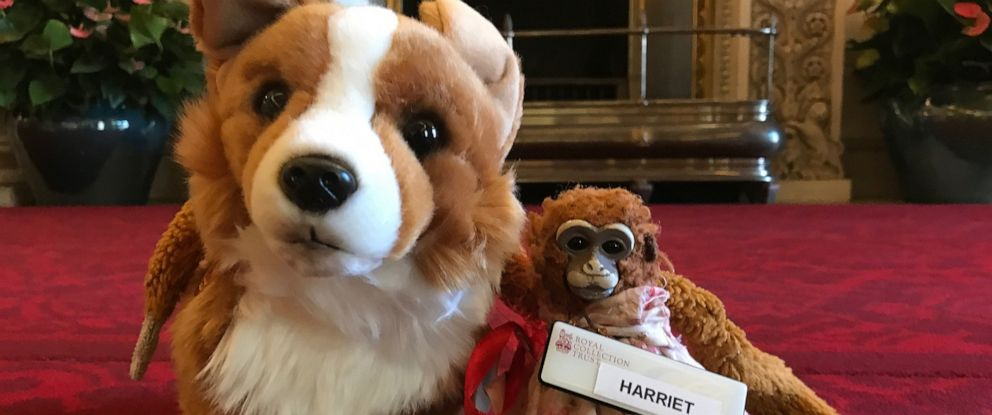 PHOTO: Harriet stuff monkey Rex stuffed corgi