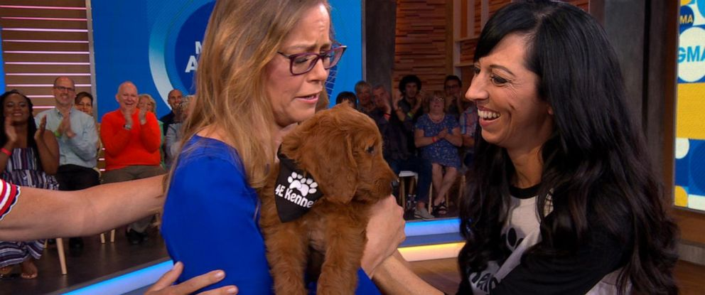 """PHOTO: Nurse Tennille Strode, who has Parkinsons disease, is surprised with a service dog by Jeanette Forrey of 4E Kennels on """"Good Morning America,"""" Aug. 12, 2019."""