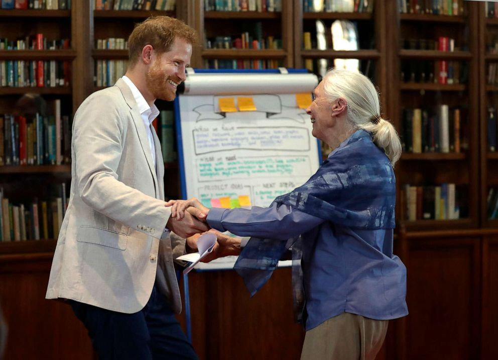 PHOTO: Prince Harry and Dr Jane Goodall dance as he attends Dr Jane Goodalls Roots & Shoots Global Leadership Meeting at St. Georges House, Windsor Castle in England, July 23, 2019.