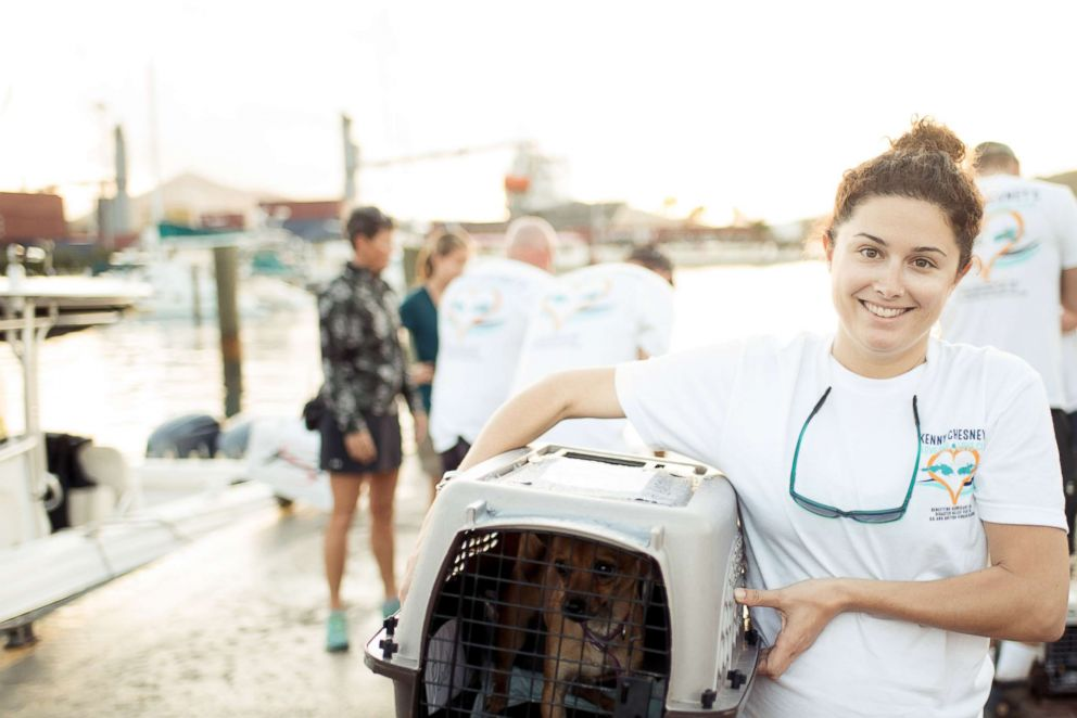 PHOTO: Lauren Saia working to help rescue homeless animals after Hurricane Irma.