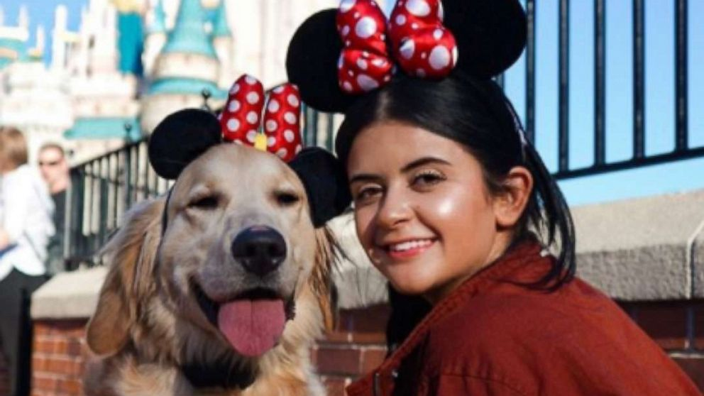 Disney is 'great training experience' for this adorable service dog