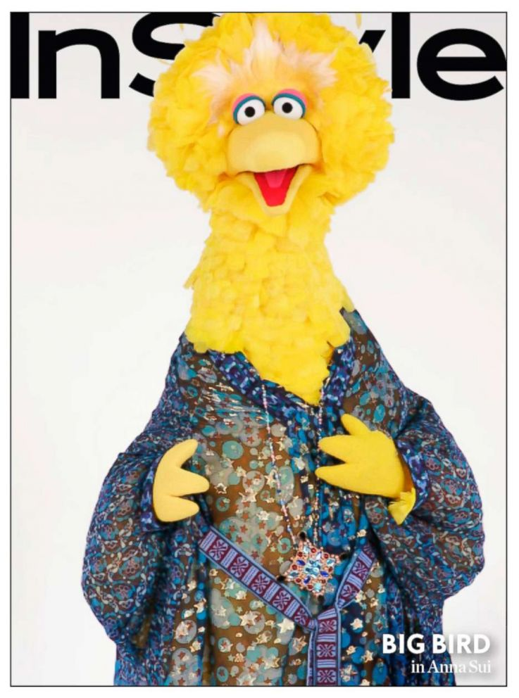 PHOTO: Sesame street characters got a makeover from InStyle magazine.