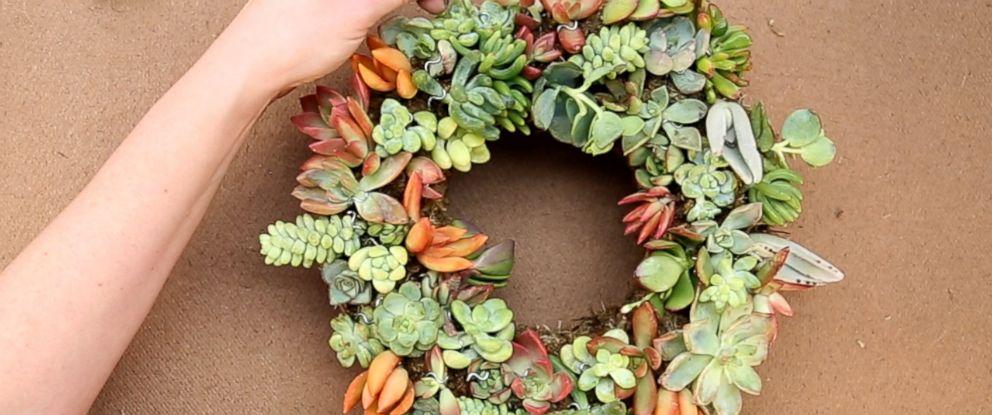 PHOTO: DIY succulent wreath