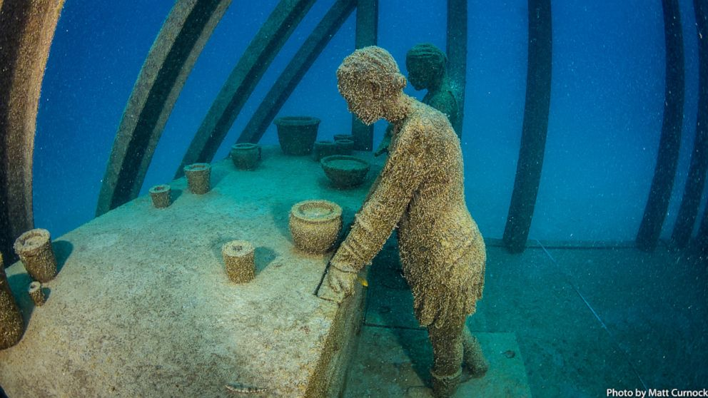 Underwater Art Museum Finally Opens After COVID-19 Delay