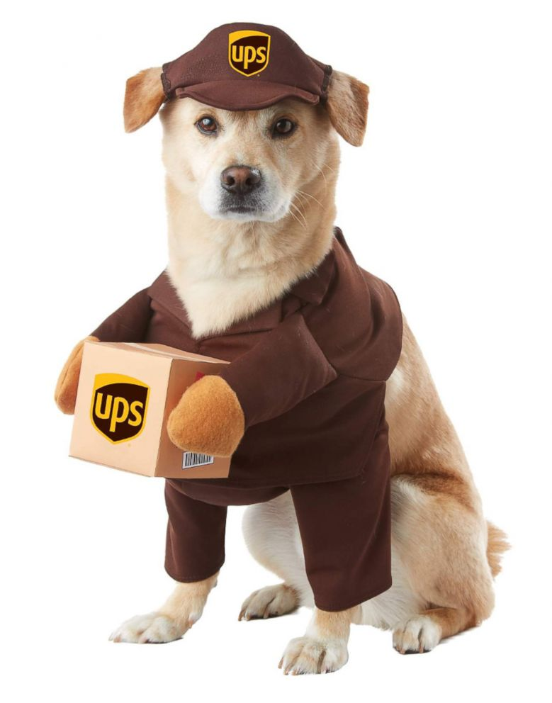 PHOTO: UPS Pal Dog Pet Costume