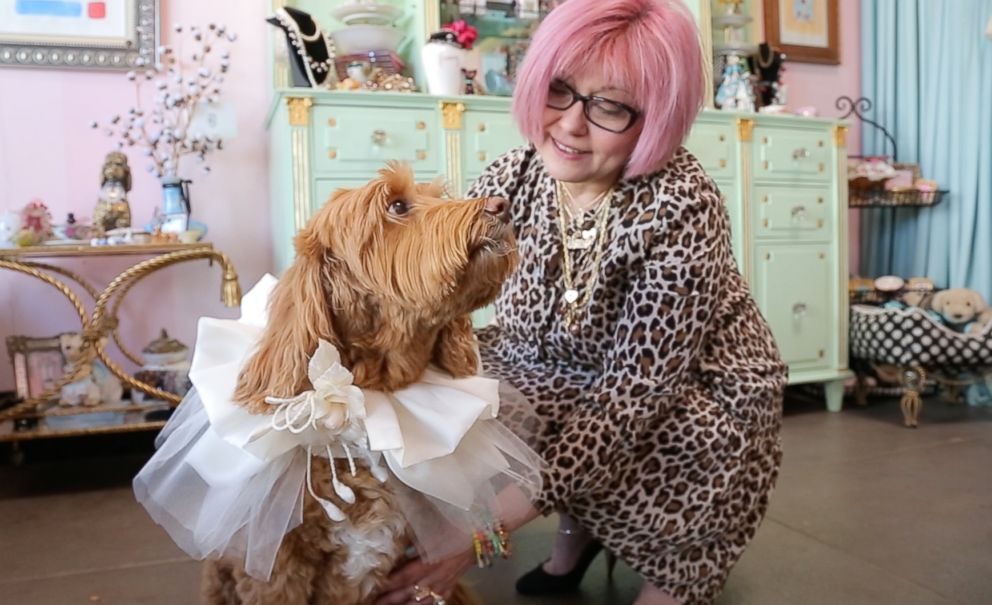 PHOTO: Costume designer Yana Syrkin created this fabric collar for a dog to wear at a wedding.