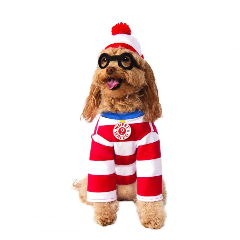 PHOTO: Wheres Waldo Pet Costume