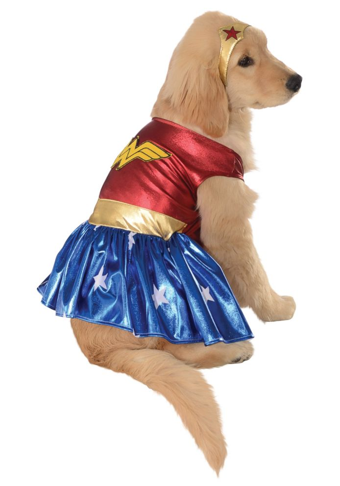 PHOTO: Wonder Woman Pet Costume