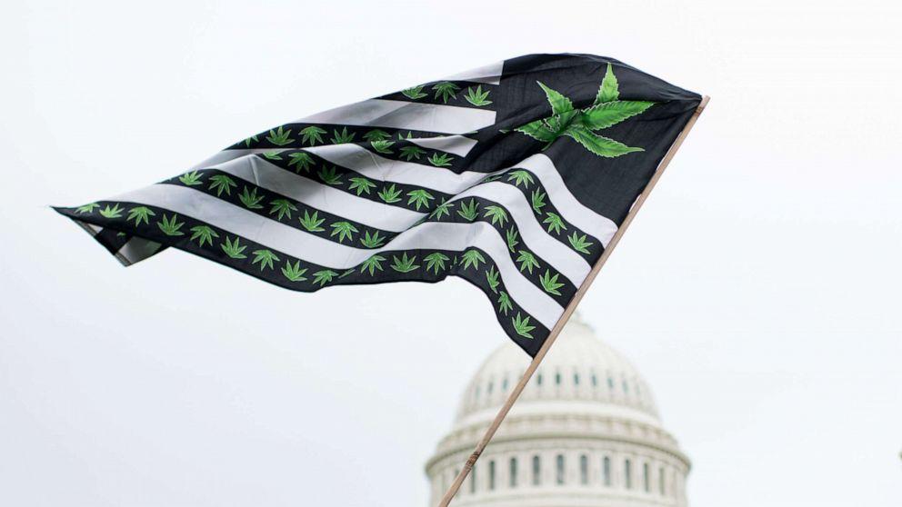 12歳のてんかん患押DC変更の医療用マリファナの政策
