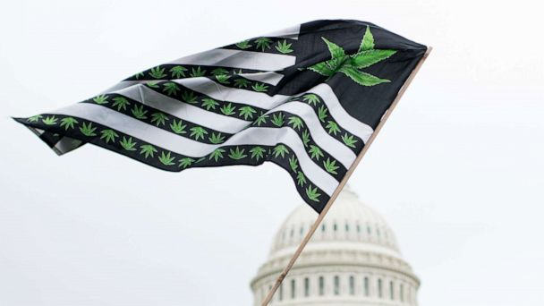 12-year-old with epilepsy pushes Washington DC to change medical marijuana policy