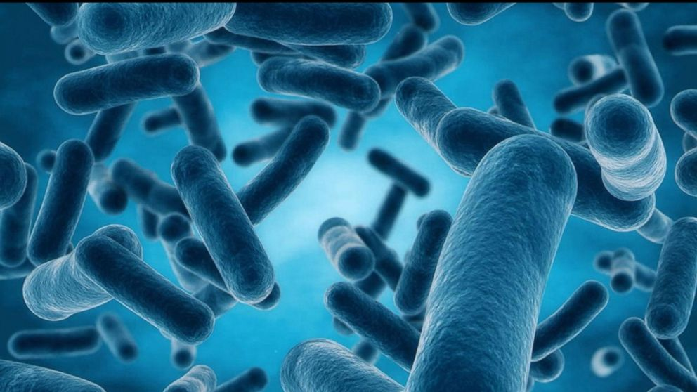 cdc focused on finding nightmare bacteria and preventing their