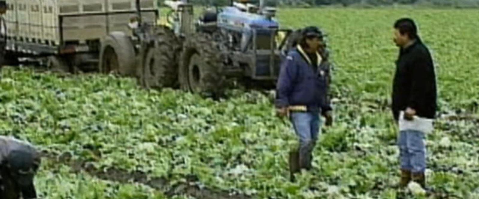 VIDEO: This is different from a recent multistate E.Coli outbreak connected to romaine lettuce.