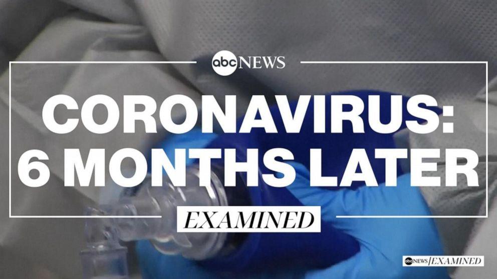 Coronavirus: 6 months later