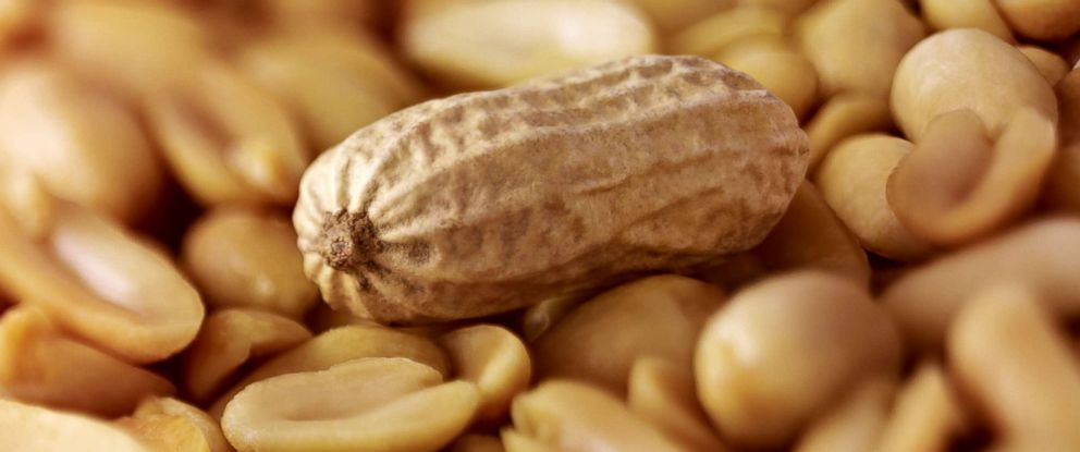 New experimental drug offers hope for those with peanut allergies