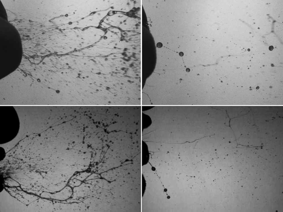 PHOTO: Top and side views of the rapid fragmentation process of mucosalivary fluid occurring during a healthy sneeze.