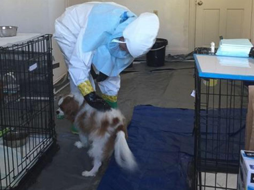 PHOTO: Nina Pham, a Dallas nurse who survived Ebola, is expected to be reunited with her dog, Bentley on Nov. 1, 2014.