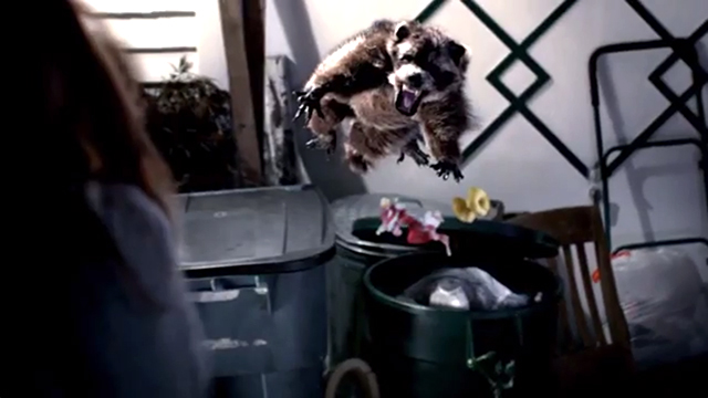 """PHOTO:Washignton State ad features woman getting attacked in slow motion by a raccoon that she can avoid if she wins a game with """"Chance."""""""