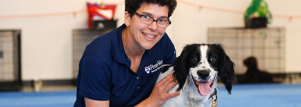 Sniffing Out Cancer Dogs Are The Pros In This Lab Abc News