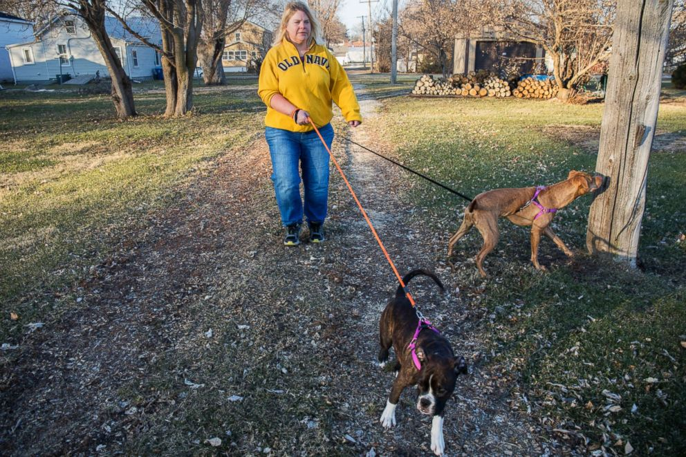 PHOTO: Danette Lake walks her dogs, Zoe and Chloe, in her Iowa neighborhood on Dec. 10, 2018. One year after having knee replacement surgery to treat arthritis, she says shes in constant pain.