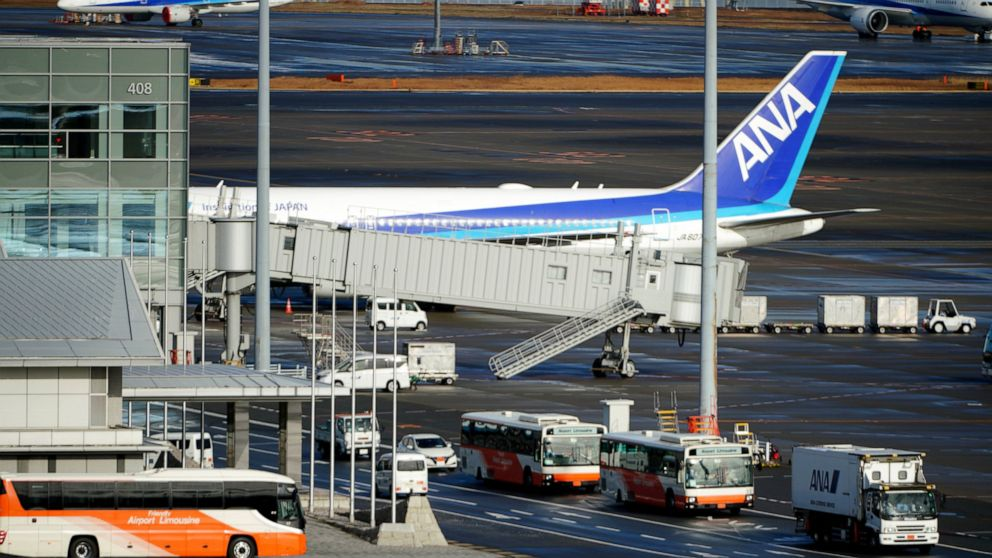 Japanese evacuation flight brings back workers from Wuhan thumbnail