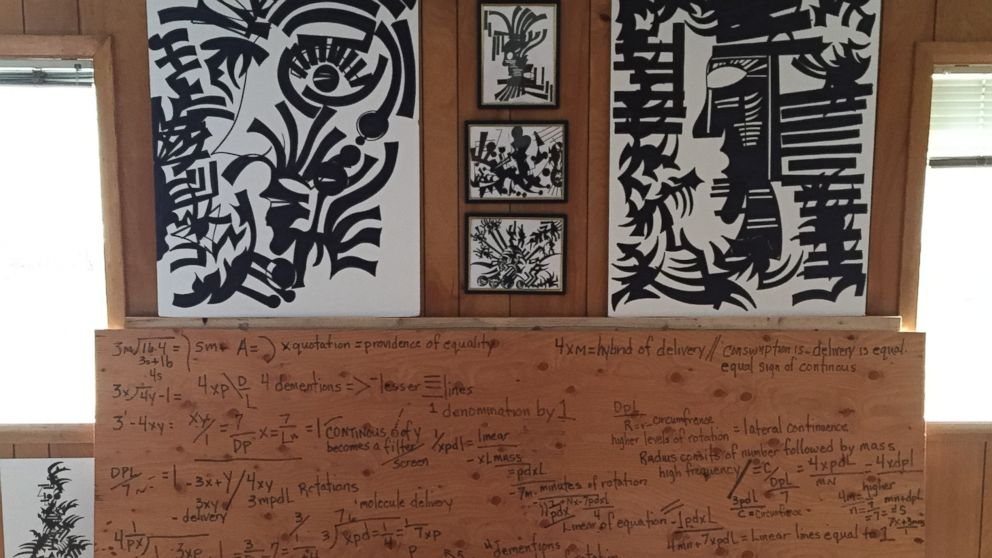 Leigh Erceg's home is now filled with mathematical equations and art -- her interpretations of how she sees the world.