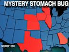 PHOTO: An outbreak of cyclosporiasis in 8 different states has been confirmed by the Center for Disease Control.