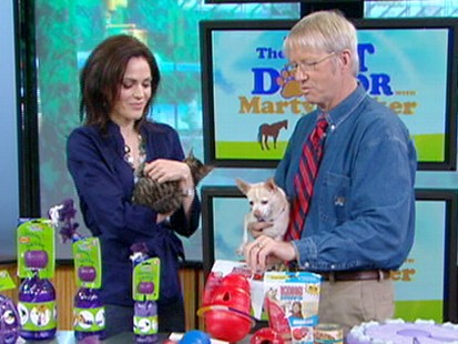 VIDEO: Why changing your pets feeding routine may help behavioral problems.