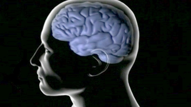 VIDEO: A study finds a natural division of labor in our brain that helps to multitask.