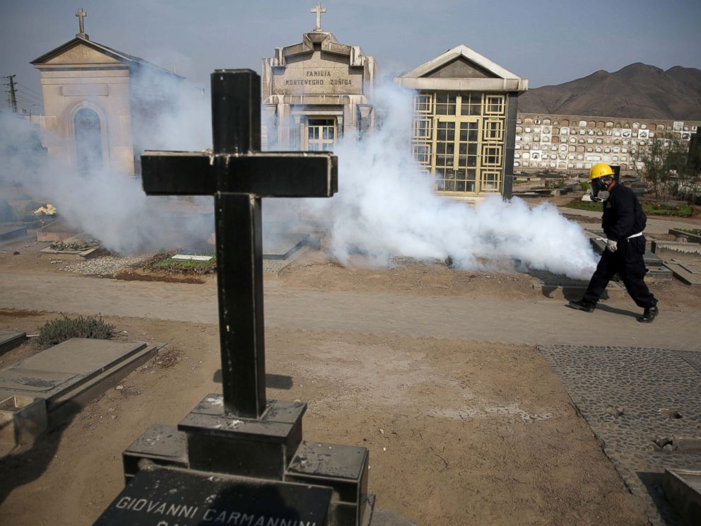 PHOTO: A health worker fumigates to prevent Dengue, Chikunguya and Zika virus at El Angel cemetery in Lima, Peru, Jan. 20, 2016.
