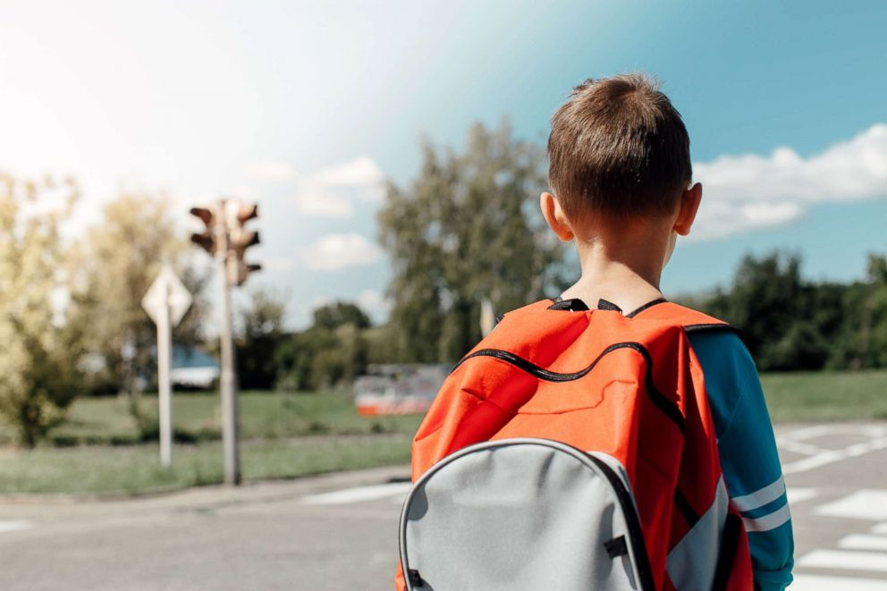 This stock image depicts a young boy wearing a backpack.