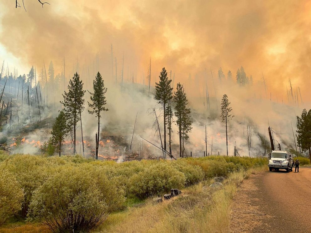 PHOTO: A handout photo made available by InciWeb and the US Forest Service (USFS) shows firefighters holding and patrolling the containment line of the Walker Fire, in Plumas County, Calif., Sept 12, 2019.