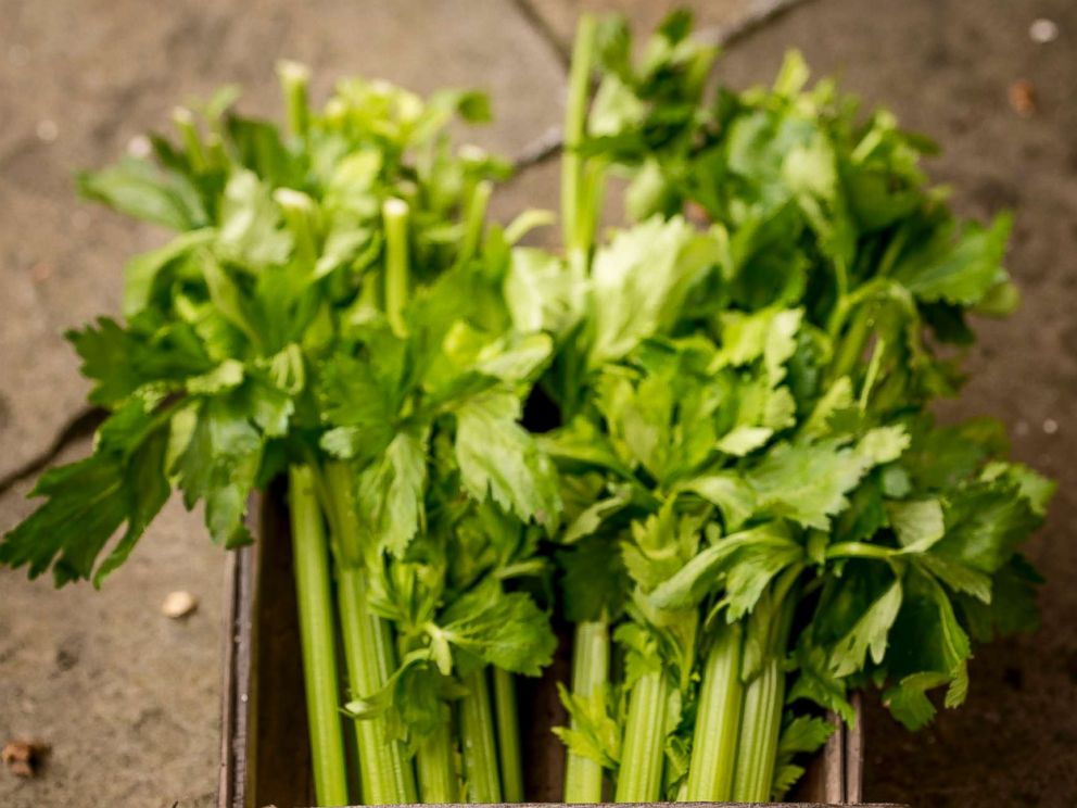 Celery juice is the latest wellness trend: Is it one you