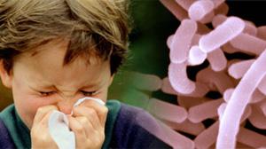 Lactobacillus acidophilus and illness