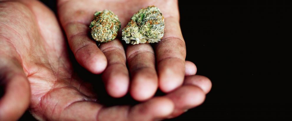 PHOTO: A person holds marijuana in their hand in this undated stock photo.