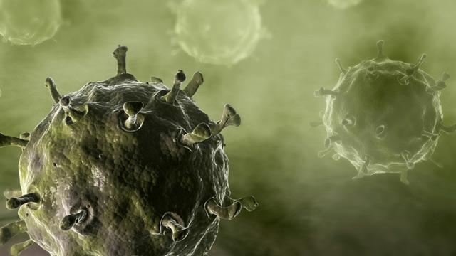 PHOTO: Illustration of avian flu virus
