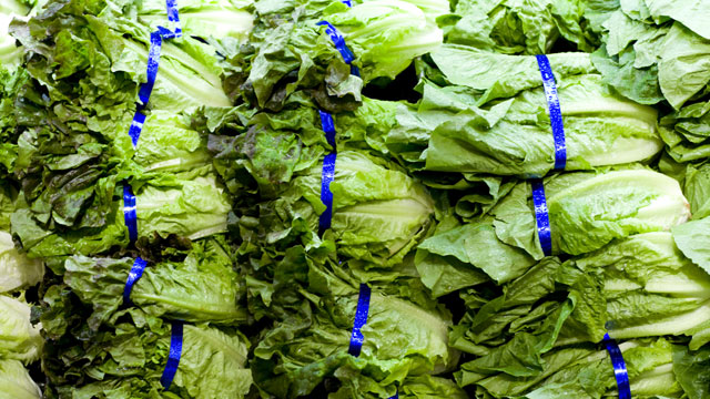 PHOTO: Close up of lettuce in grocery store.
