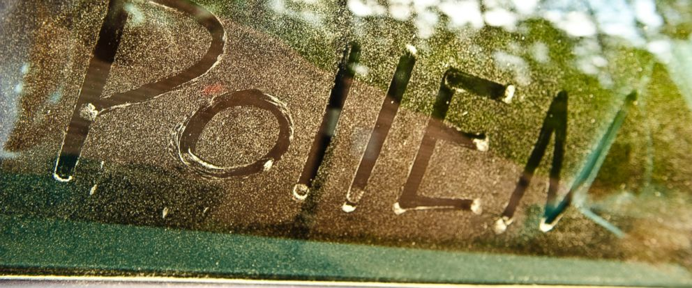PHOTO: The word pollen is written in pine tree pollen on a cars side window in an undated stock photo.
