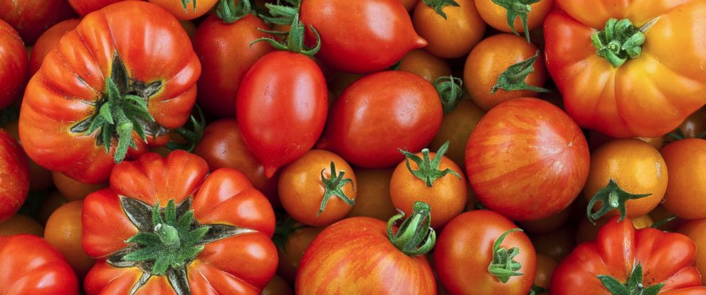 PHOTO: A selection of tomato varieties is seen in this stock photo.