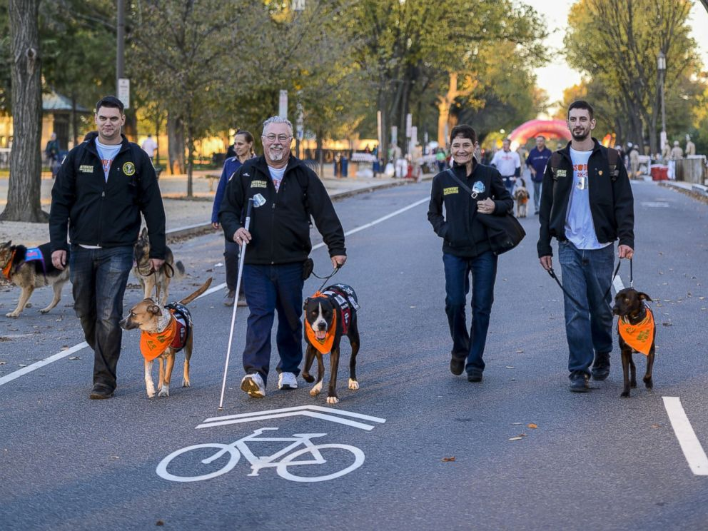 PHOTO: A&Es Dogs Of War 2K-9 Race honoring veterans and celebrating their canine companions, Oct. 26, 2014 in Washington.