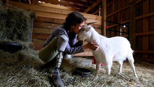 PHOTO: Albie the goat had to have his leg amputated, just like his rescuer Jenny Brown.