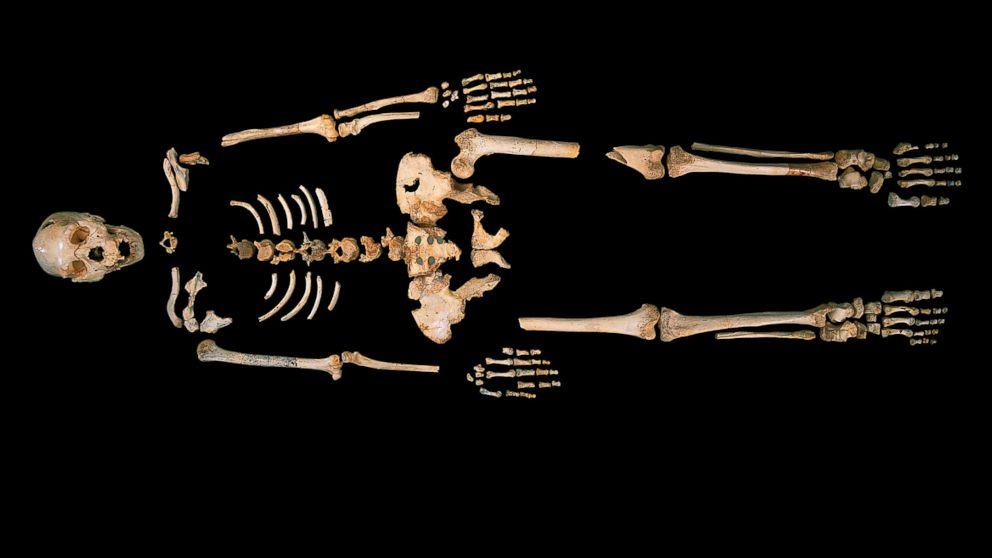 Oldest Homo sapiens bones ever found shake foundations of the human story