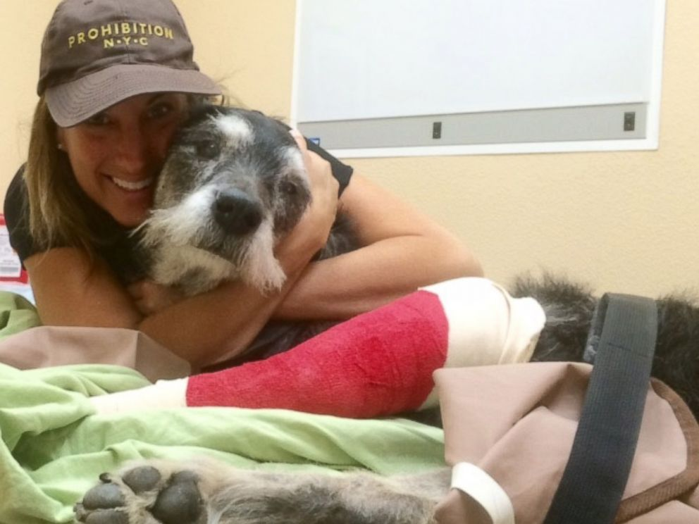 PHOTO: Ike, a dog in Hawthorne Calif. who is battling cancer, is seen with his owner Risa in this undated handout photo.