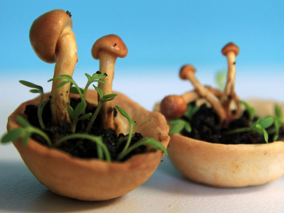 PHOTO: Chloe Rutzerveld designed the Edible Growth project to show 3D food can be healthy.