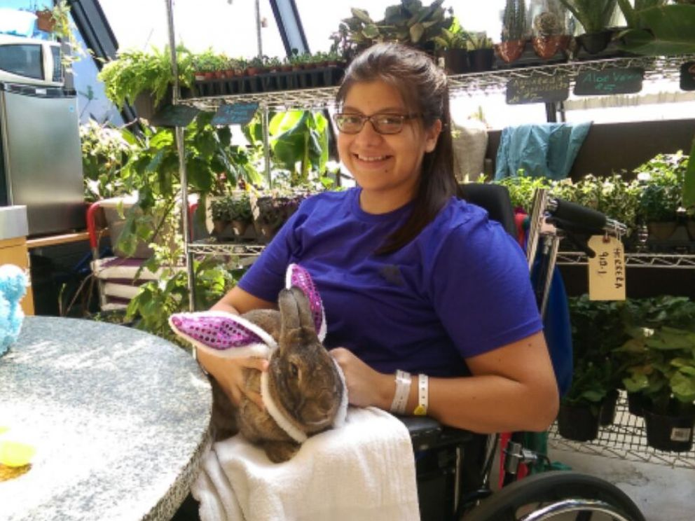 PHOTO: NYU Langone Medical Center patient Diana Herrera cuddles one of the hospitals therapy rabbits for Bunny Day.