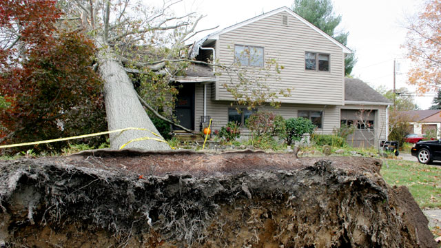 PHOTO: This 70-foot,10-ton tree smashed through a home in Allentown, N.J., during Superstorm Sandy, nearly killing its resident.